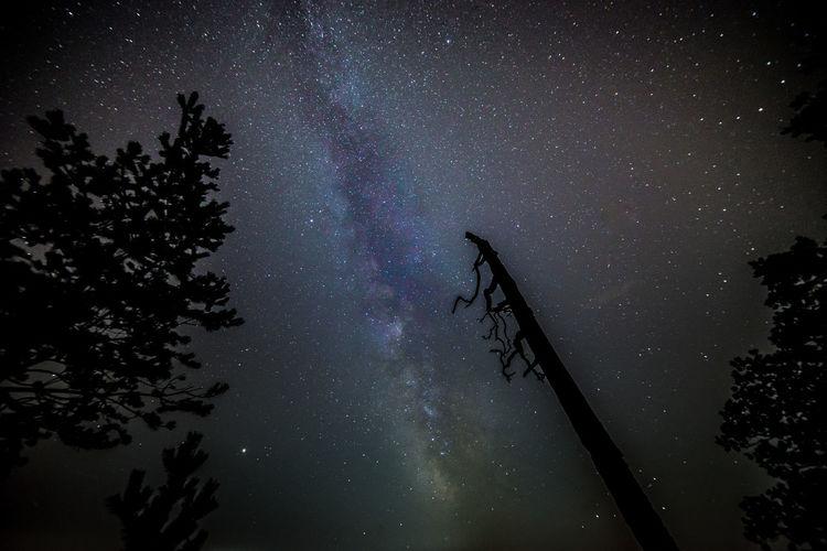 Milkyway seen
