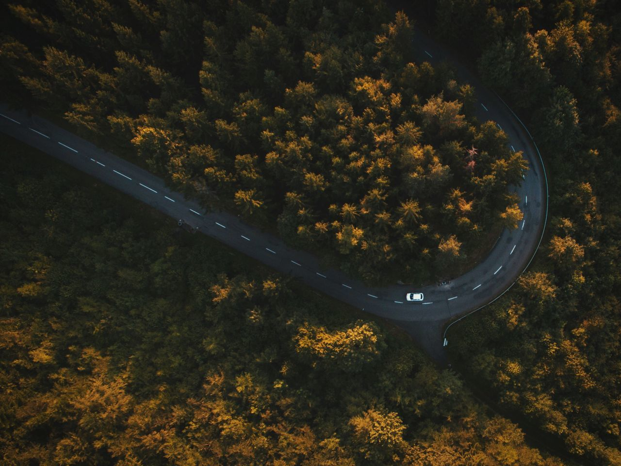 High Angle View Of Road Along Forest