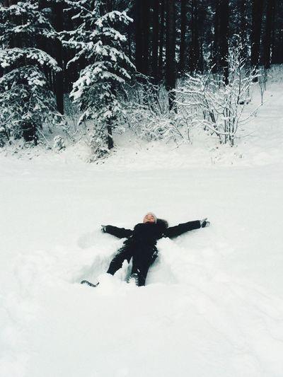 Winter Snowangel