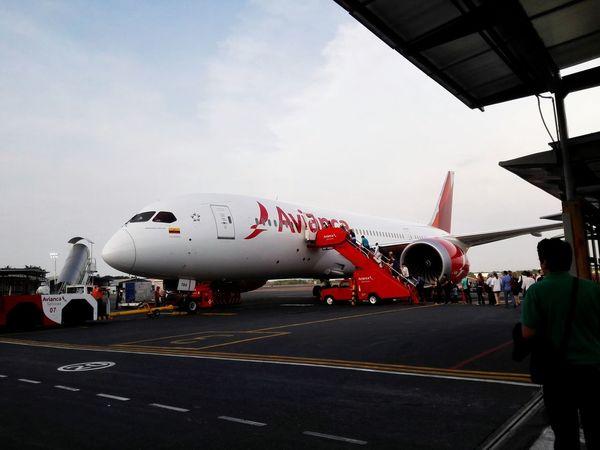 B787 Flying Airplane Avianca Happiness Traveling