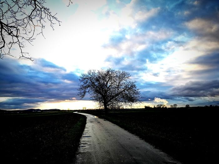 magic of nature 6 Tree Pixelated Road Rural Scene Sky Cloud - Sky Single Tree Countryside Empty Road Silhouette Dramatic Sky Sunset
