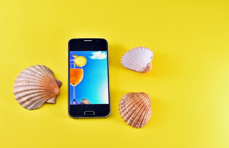 Directly above view of seashell on smart phone