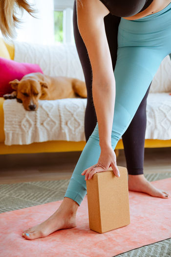 Low section of woman with dog at home