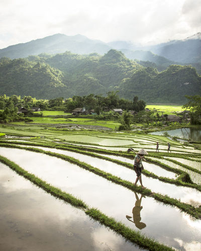 Farmers Working On Terraced Field Against Mountains
