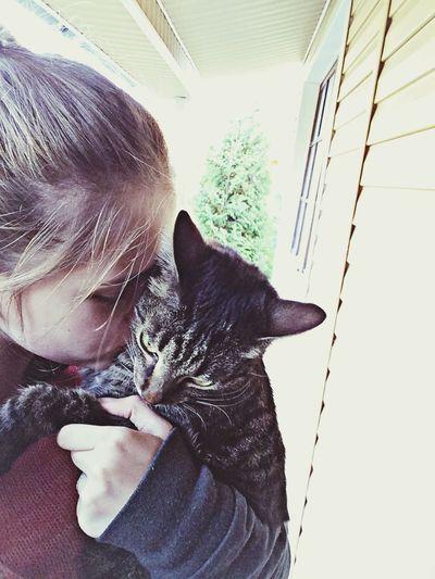 Когда скучаешь по коту - и не такое бывает