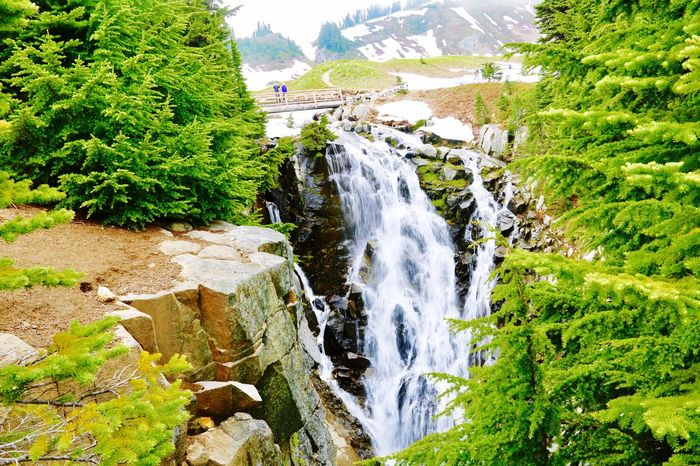 Water Scenics Nature Waterfall Mountain Beauty In Nature Travel Destinations Environment Tree Green Color Outdoors No People Steep Stream - Flowing Water Day Sky