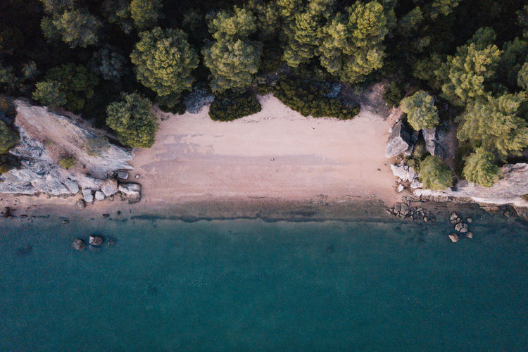 Be. Ready. Drone  High Nature Perspectives On Nature Portugal Animal Themes Animal Wildlife Animals In The Wild Beach Beauty In Nature Bird Blue Day Dronephotography High Angle View Large Group Of Animals Mammal Nature No People Outdoors Scenics Sea Swimming Tree Water Fresh On Market 2017