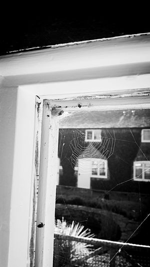 Water No People Cold Temperature Wet Outdoors Built Structure Day Nature Architecture Close-up Sky Spider Web Doorframe