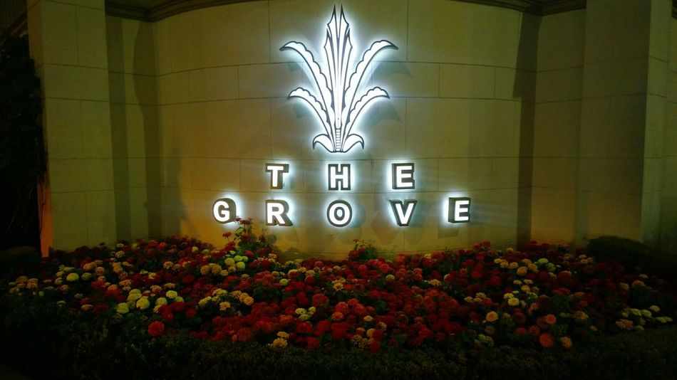 The Grove  Flowers Night Sign