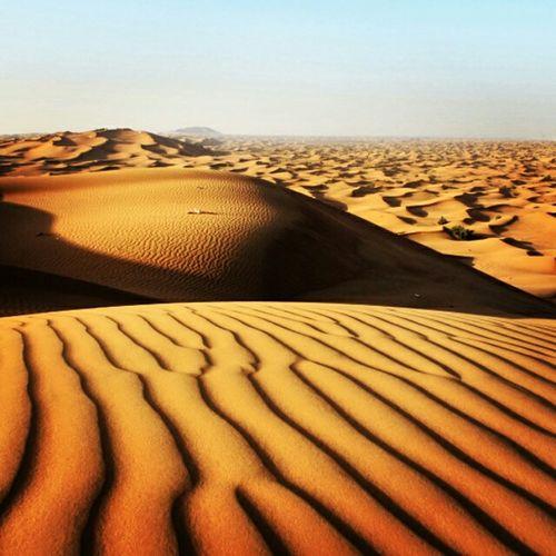 Desert , DUBY