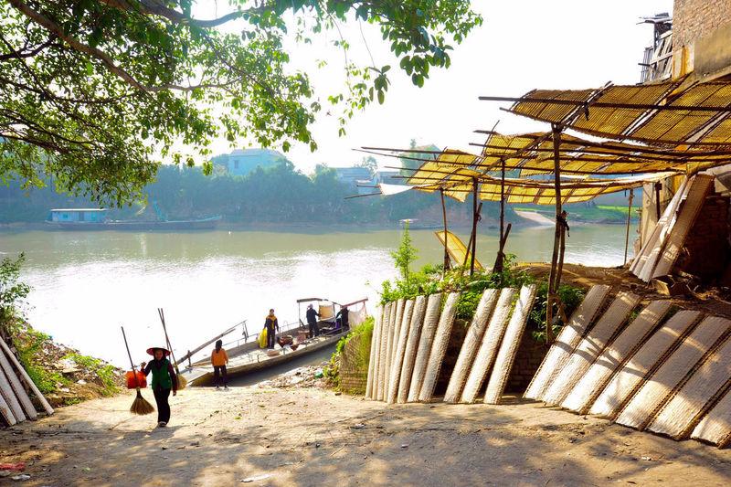 bến đò làng tôi Water Young Women Togetherness Tree Sports Clothing Sport Friendship Men Teamwork Lake