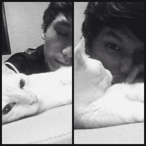 I swear my cat finds me irritating :D Kedi Cat