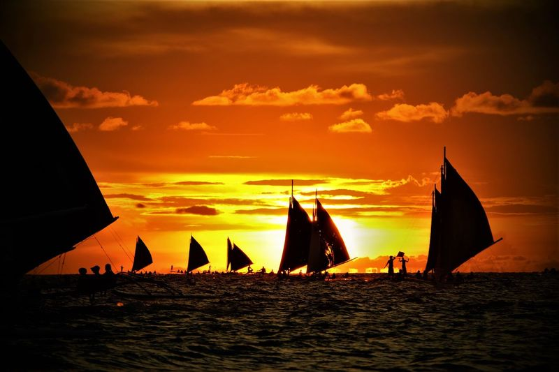 Sailboats in sea during sunset