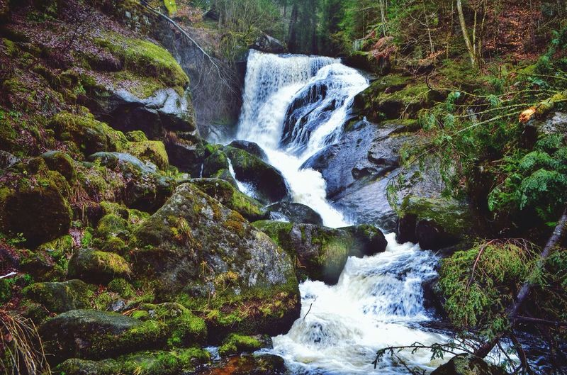 Landscapes With WhiteWall Germany Black Forest Waterfall Water Forest Nature Landscape River