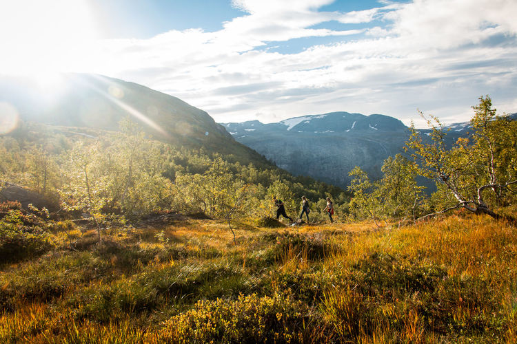 Adventure Adventures Animal Themes Beauty In Nature Colors Colors Of Autumn Day Grass Hiking Landscape Mammal Mountain Nature Norway Outdoors Scenics Sky Spring