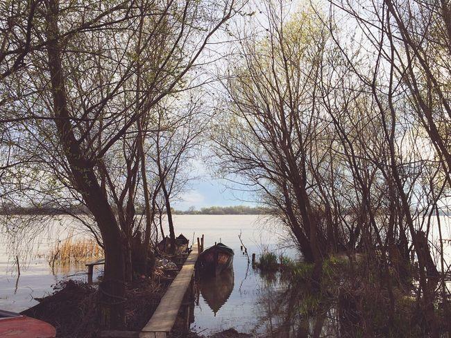 OpenEdit Vilkovo Nature Wooden Boat