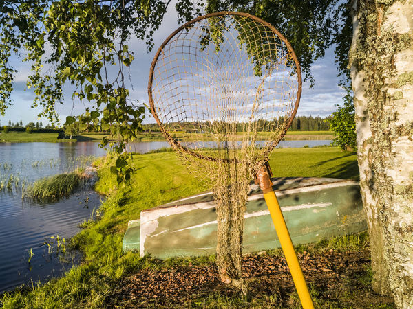 Small fishing net with handle by tree. Landscape in Estonia. Lake, boat. Boat Branches Estonia Fishing Fishing Net Lake Lakeside Landscape Lifestyles Natural No People Old Old-fashioned Outdoors Rural Rustic Sky Tree Water