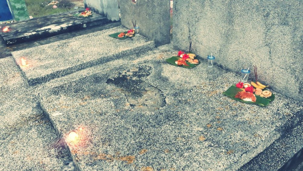 Eventhough its entitled as GRAVEYARD.... this is the best place for some unity platform to built again... High Angle View Focus On Shadow Pebble Beach Footwear Flower Head Growing Ground Stone Tile Petal In Bloom Pink Carpet Blooming Pebble