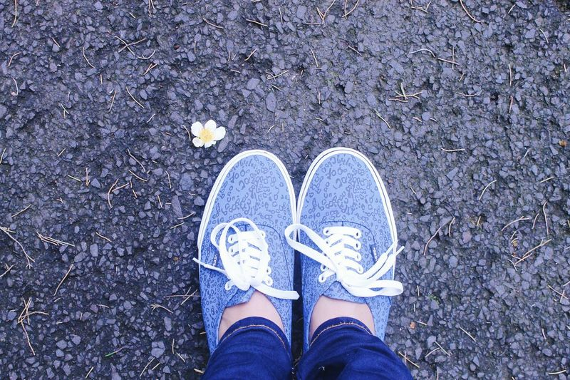 My vans. Vans Off The Wall Vans Shoes Blue Vansshoes Vansgirl Vans Surf Open Vans Skate Flower Photography Flower Street Standing Alone Strong Brave Alone Love MyShoes Outfit OOTDOutfitoftheday Human Foot Outdoors Road Marking Lifestyles Person Shoestagram