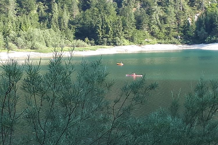 Water Sports Water Sport Canoeing Canoe Emerald Lake Emerald Water Scenics Floating In Water Trees And Water Tree Nautical Vessel Water Beach Fishing Equipment Boat Sailing Boat Water Vehicle Sailing