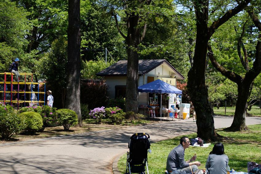 里見公園/Satomi Park Fujifilm FUJIFILM X-T2 Fujifilm_xseries Ichikawa Japan Japan Photography Nature Park Park Bench Satomi Park Sunny X-t2 市川 日本 里見公園