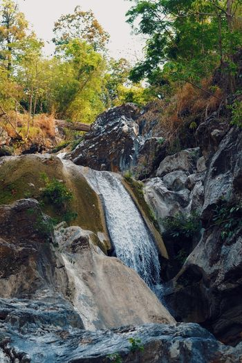 Beauty In Nature Day Environment Flowing Flowing Water Forest Growth Land Motion Nature No People Outdoors Plant Rock Rock - Object Scenics - Nature Solid Tree Water Waterfall