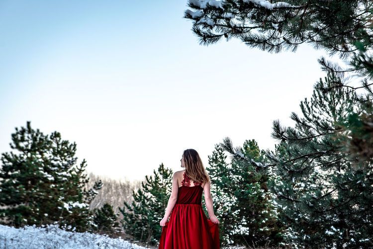 Morning Light Green White Background Pinetrees Tree Forest Copy Space Natural Snowy Cold Temperature Winter Snow Girl Woman In Red Red Dress Red Outdoors Nature Women One Person Standing Hair Beauty In Nature Long Hair Young Adult