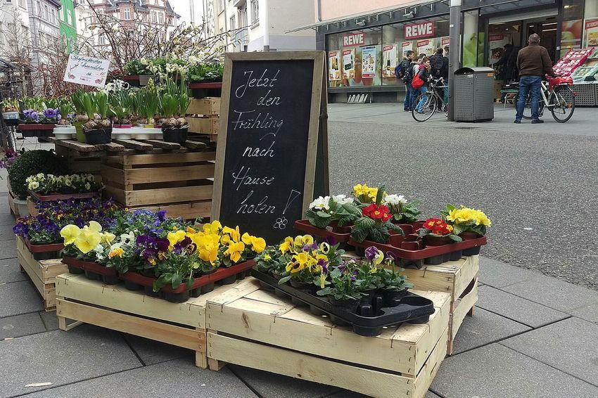 Urban Spring Fever Htconem8 EyeEm Deutschland Streamzoofamily For You ;-) EyeEm Best Shots - The Streets