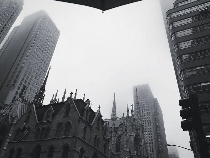 Fog Outdoors