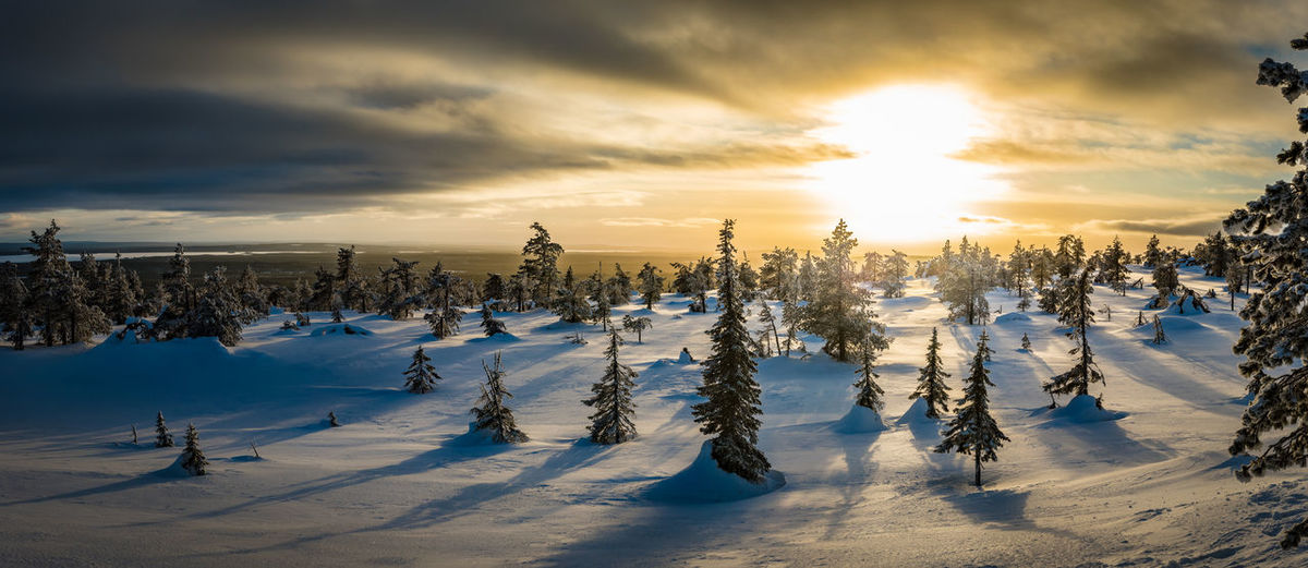 Finland Lapland Panorama Winter Cold Temperature Landscape Polar Circle Tunturi