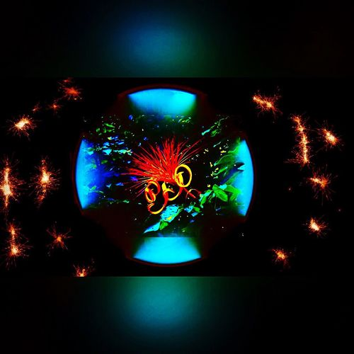 Angra Dos Reis RJ BRASIL ☀️🇧🇷 EyeEm Team Illuminated Sky Light Light And Shadow EyeEm Best Shots Eye4photography  Art Photography Photo Of The Day Photo Taking Photos Editing