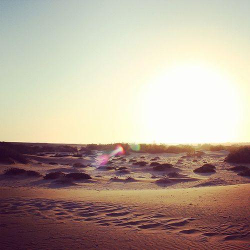 Sunset Desert Untouched Natureshotz nature namibia swakopmund dry igers dune ig_shotz instapic picoftheday galaxys5 sunsetshot hotshotz ig_dunes