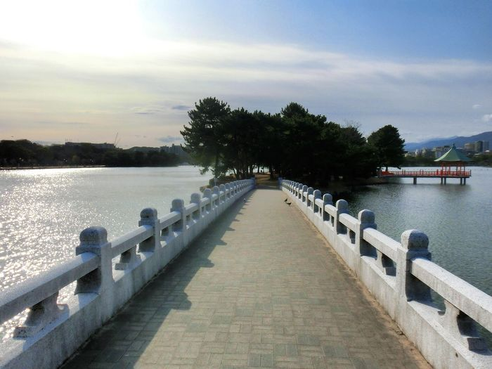 Hi! Hello World Taking Photos No People Outdoors Beauty In Nature Lake Nature Water Tree Sky Day Enjoying Life Park Beauty In Nature Travel Destinations Cityscape Tranquility Bridge Blue Sky Fukuoka City  Japan 福岡 大濠公園