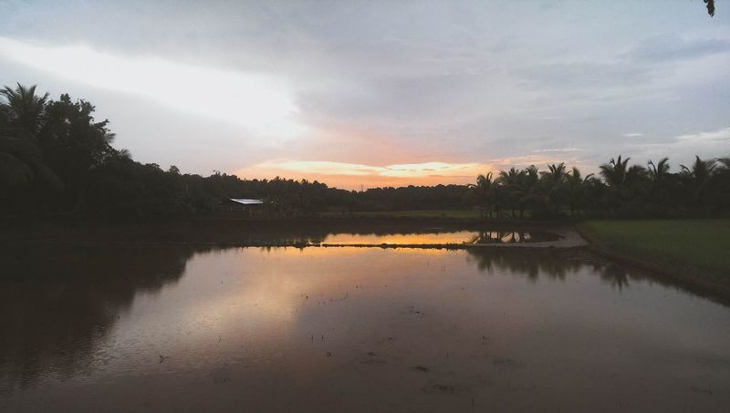 Reflection Lake Autumn Water Dawn Sky Landscape Nature No People Outdoors Fog Scenics Sunset Cloud - Sky Tranquility Beauty In Nature Tree Day Horizon Over Water EyeEmNewHere Kerala India Palakkad GodsOwnCountry