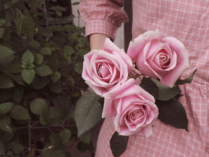 Pink Rose Beauty In Nature Bouquet Close-up Florist Flower Flower Head Freshness Hand Holding Rose Leaf Nature One Person Outdoors People Petal Pink Color Pink Dress Pink Flower Plant Rose - Flower Roses Rosé Three Roses