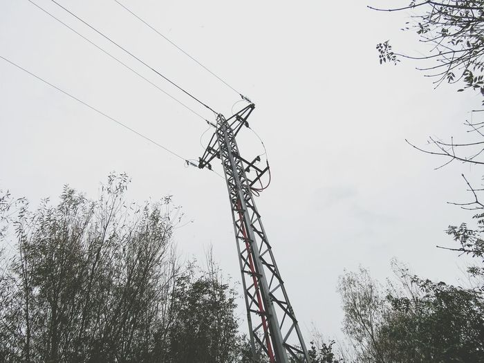 Low angle view of birds on electricity pylon against sky