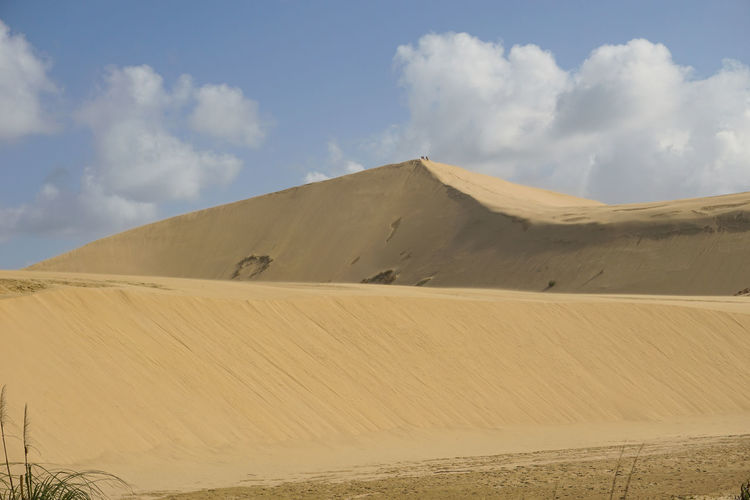 giant sand dunes EyeEm Selects Sand Dune Desert Arid Climate Sand Nature Reserve Hill Accidents And Disasters Horizon Summer Environment Natural Landmark