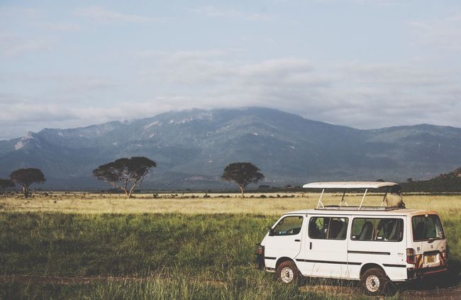 Naturelovers Safaripark Wildanimal Tsavo Enjoying The View Minibus Safari Minivan Savana