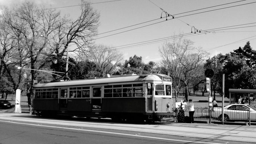 Tram On Road