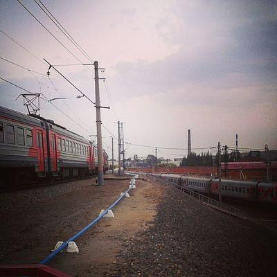 выставкаомск омск поезд Train