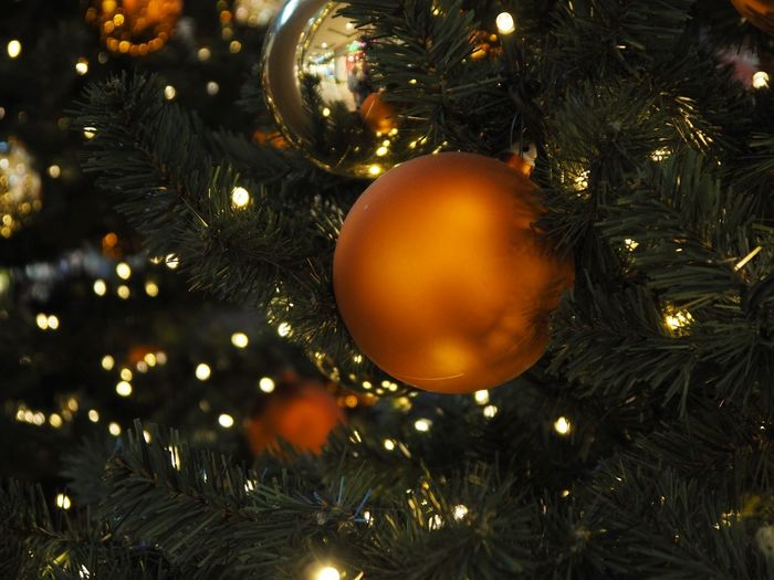 Christmas Christmas Decoration christmas tree Celebration Decoration Christmas Ornament Holiday Tree Christmas Lights Close-up Illuminated No People Indoors  Holiday - Event Celebration Event Sphere Hanging Event