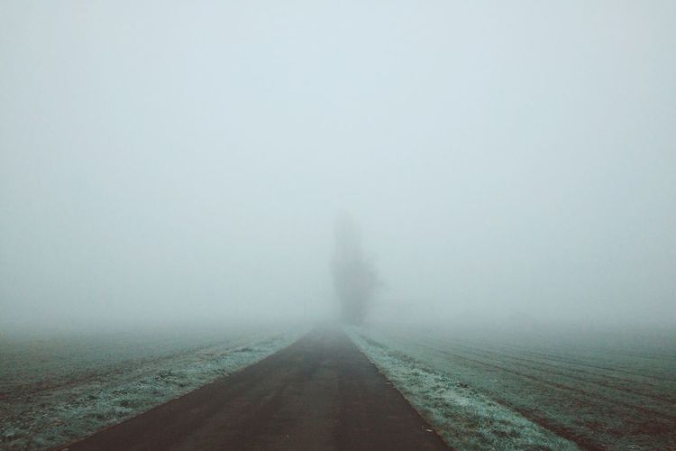 Road in foggy weather