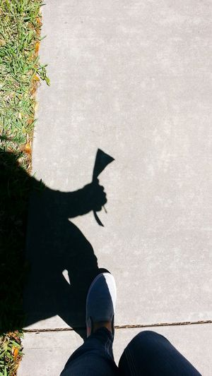 In my hand I carry all the answers. Shadow Human Leg Low Section Real People College Life College Girl  Student ExamDay Studyguide