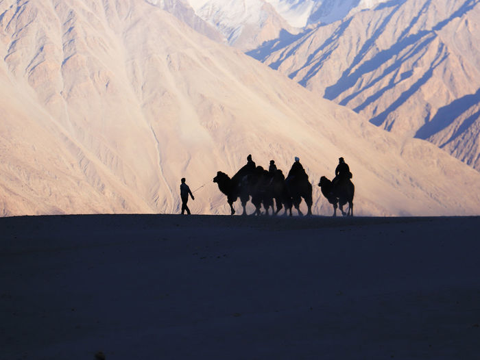 People riding camels on sand against mountains