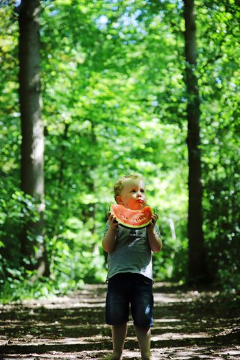 Boy eating melon while standing on road in forest