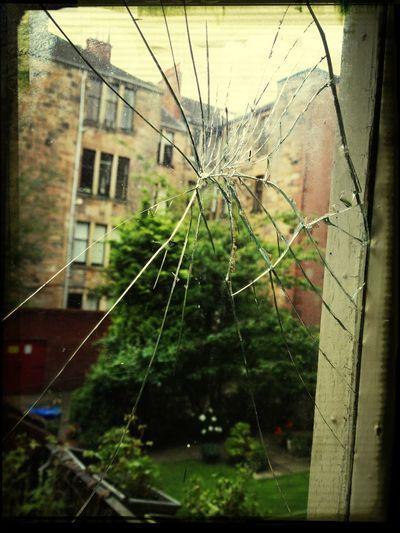 Garden Glass Outdoors