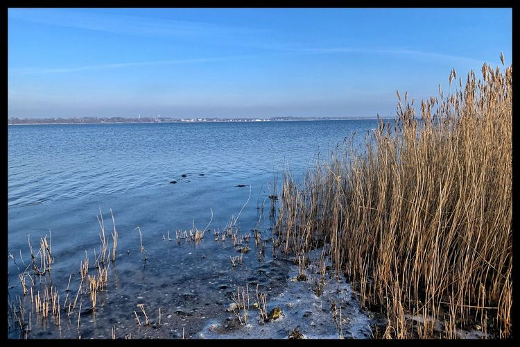 Holbæk Denmark Fiord Water Sky Sea Nature Transfer Print Beauty In Nature No People Horizon Day Scenics - Nature Horizon Over Water Outdoors Tranquil Scene Clear Sky Beach Tranquility Land Blue