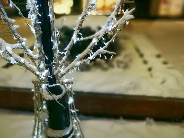 Illuminating the holidays Close-up Focus On Foreground Outdoors No People Snow ❄ Sofia, Bulgaria Night Illuminations Christmas Lights Winter Center Holydays