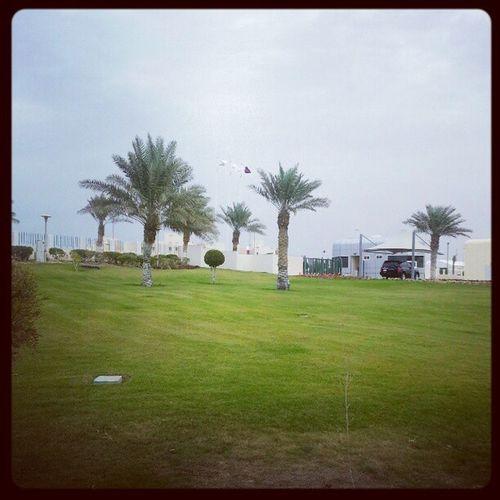 Qatar Doha Alwakra Q6r do7a قطر الكويت q8 dubai adal3ain العين دبي بوظبي الامارات الدوحة السعودية البحرين bah kwt