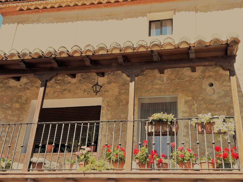 Albarracín Arquitecture SPAIN Arquitectura España Flower Naturaleza Plant Window